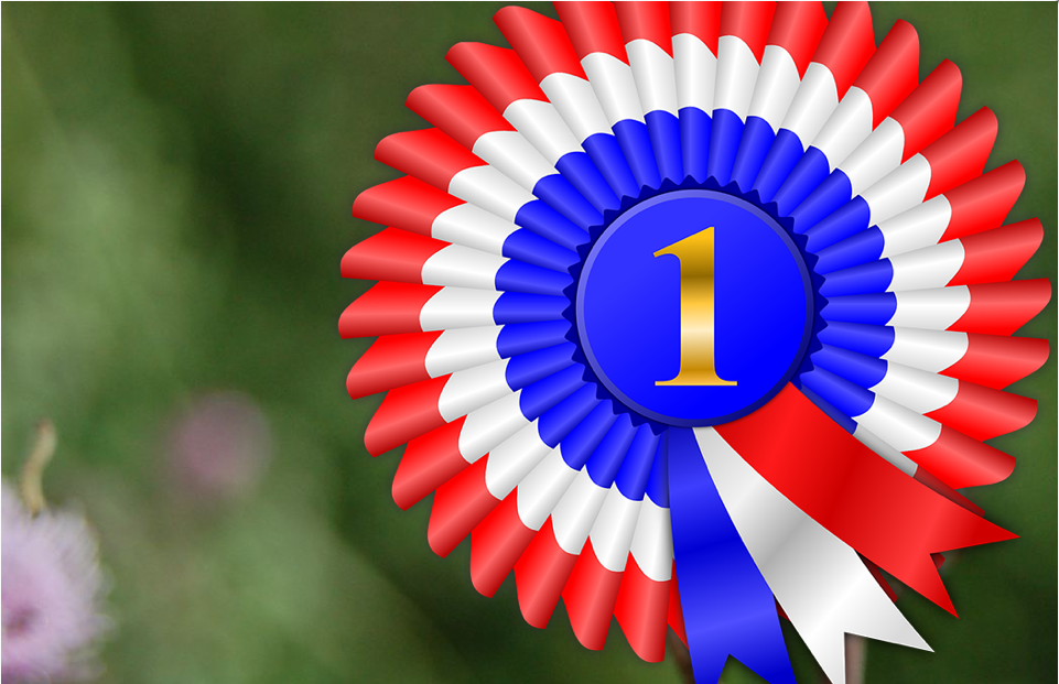 Winner's ribbon