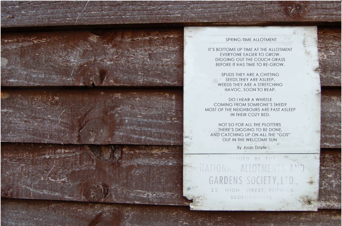 Shed wall with a page nailed to it containing the Spring Poem