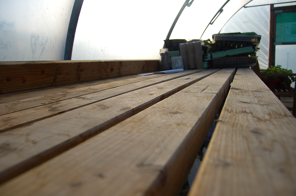 Inside the polytunnel looking down the length of the potting bench